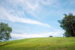 Zielona trawa na wzgórzach z jasnym niebieskim niebem, Doi Samer Dao Fotografia Stock