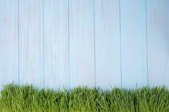 Zielona trawa nad drewnianym tłem Obrazy Royalty Free