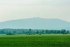 Zielona trawa pola i ÅšlęŠ¼ góra Fotografia Royalty Free