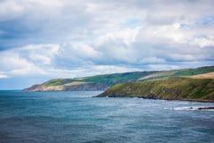 Zielona trawa przeciw niebieskiego nieba zakończeniu up w colour Zdjęcie Royalty Free
