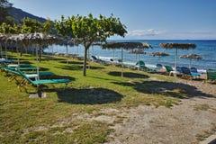 Zielona trawa przy Porto Kaminia plażą, Zakynthos wyspa Obrazy Royalty Free