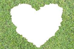 Zielona trawa serce Zdjęcia Royalty Free