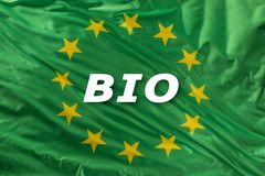 Zielona unii europejskiej flaga jako ocena organicznie życiorys ekologia lub jedzenie zdjęcie royalty free