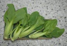 Zielona warzywo grupa fotografia royalty free