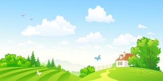 Zielona wieś Zdjęcia Stock