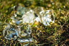 Zielona wiosny trawa na nim kostka lodu kłamstwo sunshine meadow gazon tło lub tekstura fotografia stock