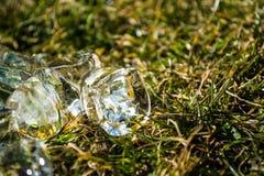 Zielona wiosny trawa na nim kostka lodu kłamstwo sunshine meadow gazon tło lub tekstura obraz stock
