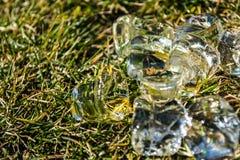 Zielona wiosny trawa na nim kostka lodu kłamstwo sunshine meadow gazon tło lub tekstura fotografia royalty free