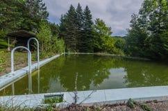 zielona woda w zaniechanym basenie obrazy royalty free