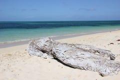 zielona wyspa Zdjęcie Stock