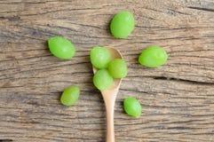 Zielona zalewy nabody owoc fotografia stock