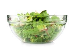 zielona zdrowa sałatka Zdjęcia Stock