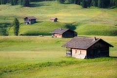 Zielona Ziemia uprawna Fotografia Stock
