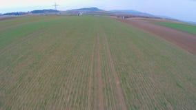 Zielona ziemia uprawna, widok z lotu ptaka dłudzy kultywujący pola Rolnictwo, uprawia ziemię zbiory