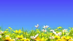 Zielone łąki i kwiaty royalty ilustracja