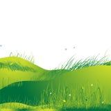 zielone łąki lato trawy royalty ilustracja