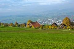 Zielone łąki nad jezioro lucerna blisko góry Rigi, Alps, Szwajcaria zdjęcie royalty free