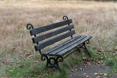 zielone ławki parku zdjęcie stock