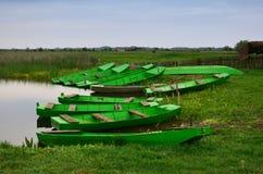 Zielone łodzie przy parkiem narodowym Zasavica obraz stock