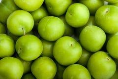zielone śliwki Obrazy Royalty Free