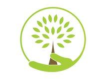 być zielone fotografia royalty free