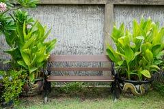 zielone ławki parku Zdjęcia Royalty Free