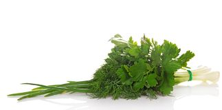 Zielone cebule, pietruszka i koper, obrazy stock