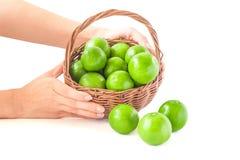 zielone cytryny Fotografia Royalty Free