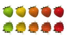zielone czerwone truskawki Zdjęcia Royalty Free