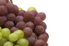 zielone czerwonych winogron Zdjęcia Stock