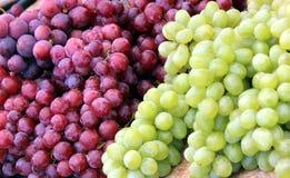 zielone czerwonych winogron Fotografia Royalty Free