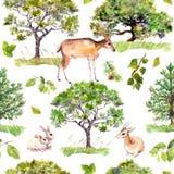 zielone drzewa Park, lasu wzór z lasowymi zwierzętami - rogacz, króliki, antylopa Bezszwowy wielostrzałowy tło Zdjęcie Royalty Free
