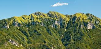zielone góry fotografia stock