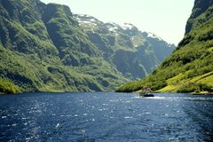 Zielone góry i siklawy w Sognefjord Scandinavia Norwegia Zdjęcie Stock