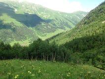 Zielone góry, sceniczny krajobraz, wysokogórskie łąki obrazy royalty free