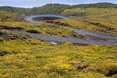 Zielone halne wijącej drogi krzywy Zdjęcia Royalty Free