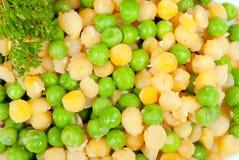 Zielone i żółte fasole Zdjęcia Royalty Free