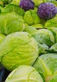 Zielone i purpurowe kapusty przewodzą przy rolnika rynkiem zdjęcie royalty free