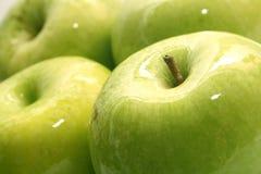 zielone jabłka dojrzałego Obraz Stock