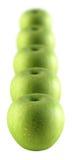 zielone jabłka Zdjęcie Stock