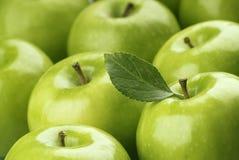 zielone jabłka Obrazy Royalty Free
