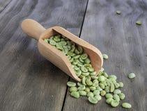 Zielone kawowe fasole Obraz Royalty Free