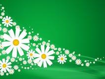 zielone lata kwiaty royalty ilustracja