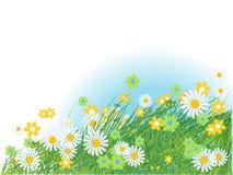 zielone lata sylwetki trawy ilustracji