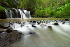 zielone leśną wodospadu Zdjęcie Royalty Free