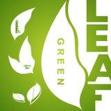 Zielone liść ikony logo i projektów elementy Zdjęcia Stock