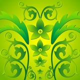 zielone liści, Fotografia Stock