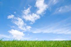zielone niebo błękitne trawy fotografia stock