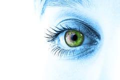 zielone oko Obraz Stock