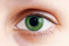 zielone oko fotografia stock